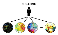 curating-diagram